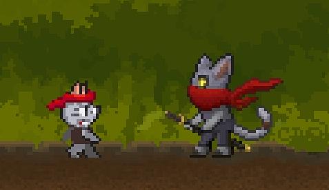 new ninja cat